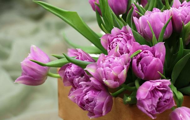 В Україні та світі відзначають Міжнародний жіночий день - Міжнародний жіночий день - 2473289