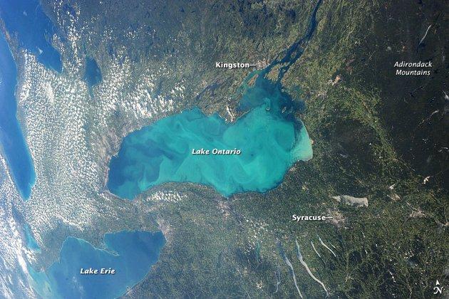 У Новій Зеландії під морським дном знайшли справжній «прісноводний заповідник» - Вода - 25 voda2