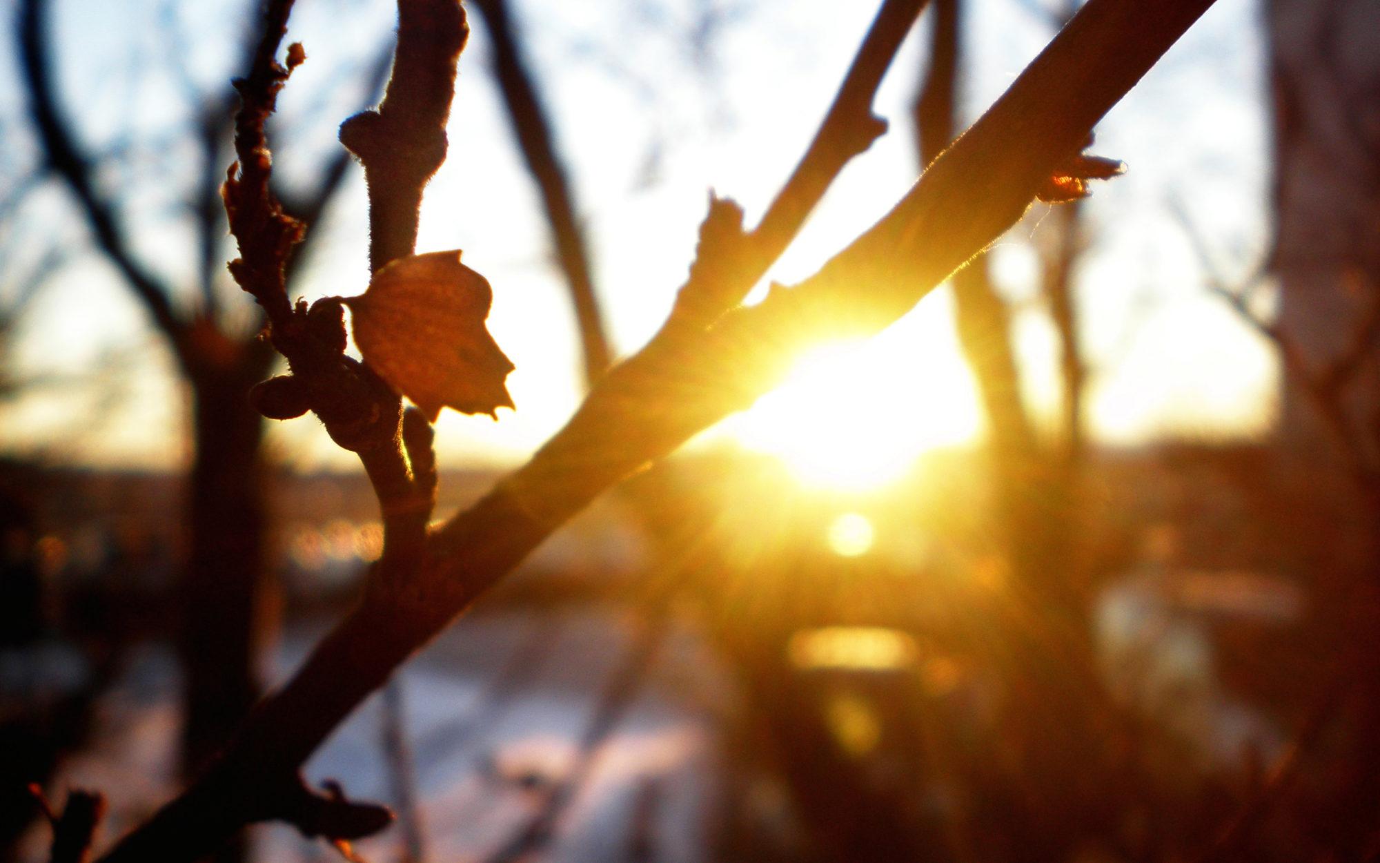 26 березня на Київщині почне потроху теплішати - погода - 26 pogoda 2000x1250