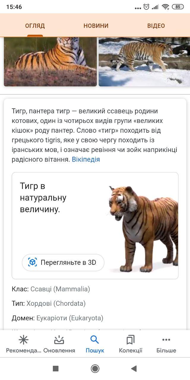 Тигр у вас вдома: як створити 3D-модель тварини за допомогою смартфона - тварина, google - 31 gugl2