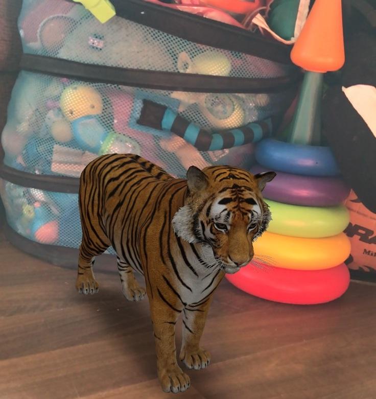 Тигр у вас вдома: як створити 3D-модель тварини за допомогою смартфона - тварина, google - 31 gugl3