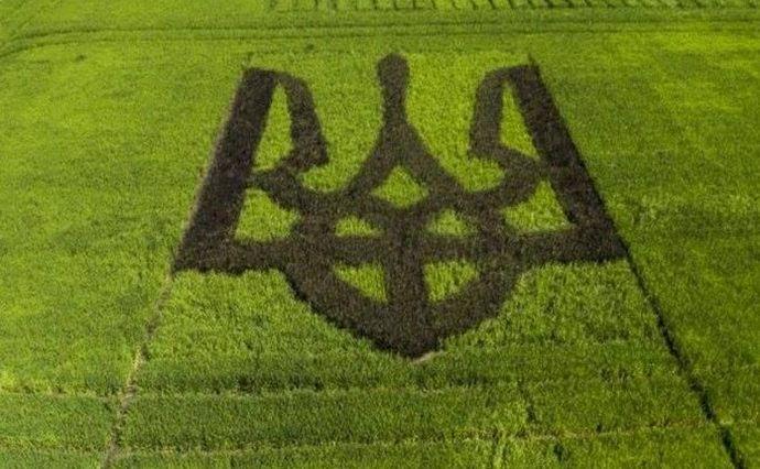 Верховна Рада України ухвалила закон про відкритий ринок землі - Україна, Земля, закон - 4431D612 9038 4462 B37F 17B9B3D334B9