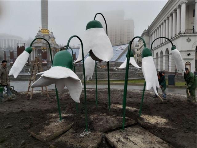 Величезні підсніжники встановили на Майдані Незалежності -  - 5e5f7b1fd5928
