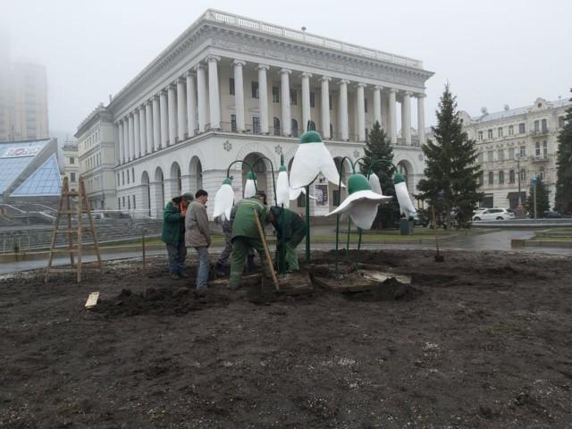 Величезні підсніжники встановили на Майдані Незалежності -  - 5e5f7b1fd9458