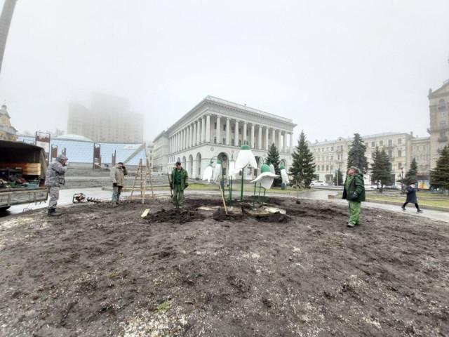 Величезні підсніжники встановили на Майдані Незалежності -  - 5e5f7b1fd98b1