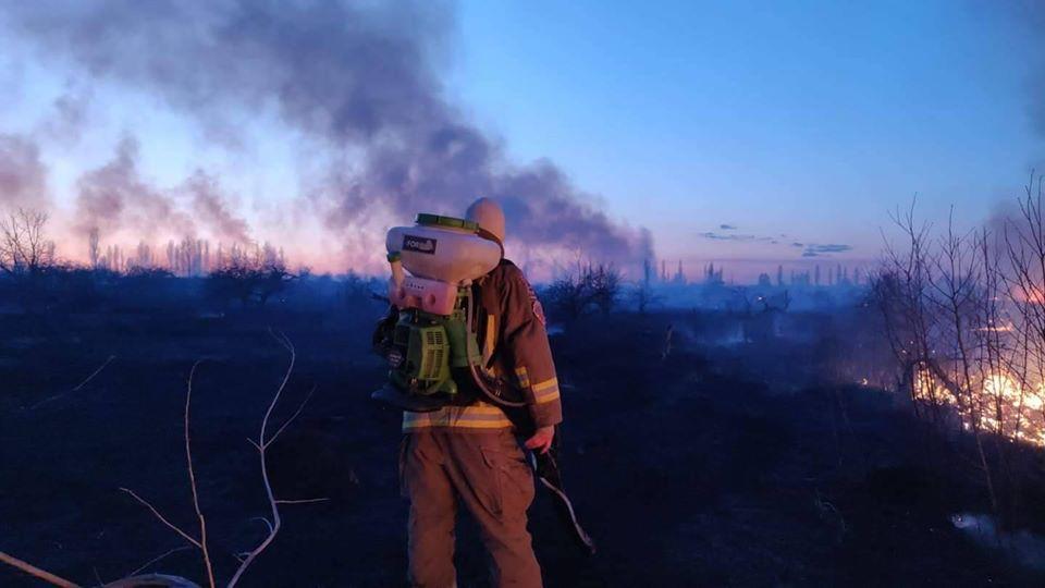 """Злодії підпалили поле біля аеропорту """"Бориспіль"""" -  - 89533992 2639431079664960 6015374900917698560 o"""