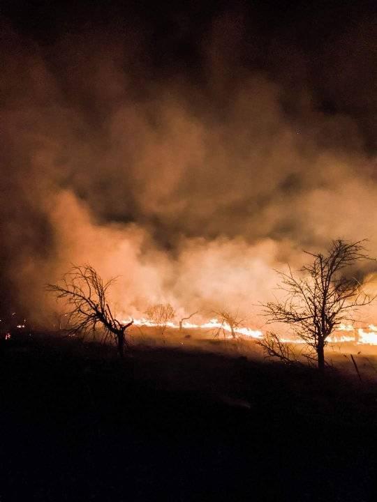 """Злодії підпалили поле біля аеропорту """"Бориспіль"""" -  - 89779894 2639431069664961 6593234910616485888 n"""