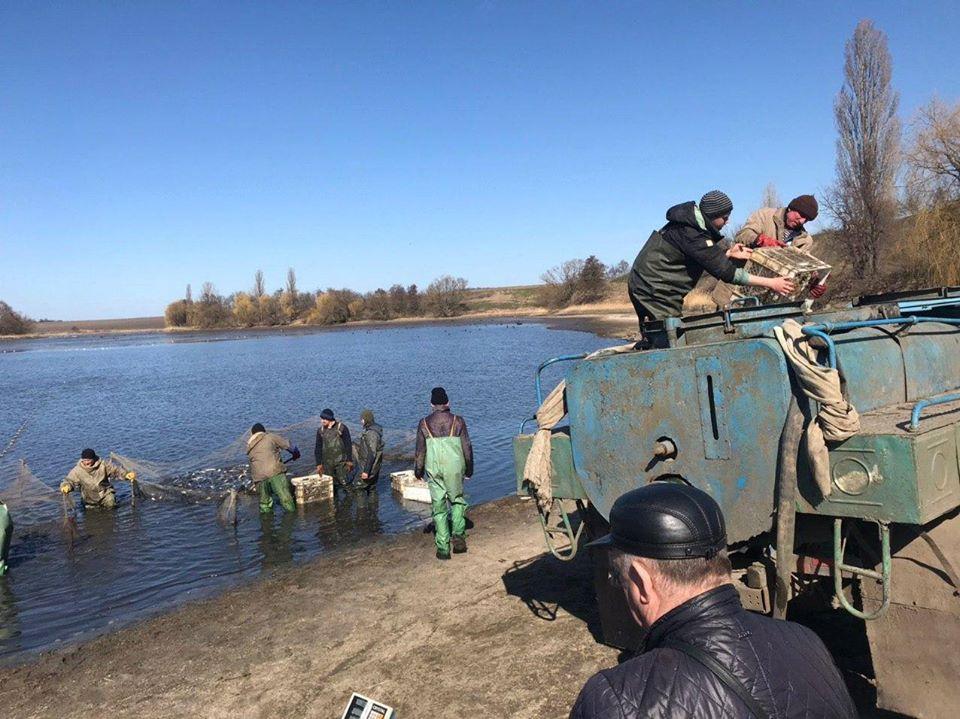 Одну із водойм Володарщини  поповнили майже 7-ма тоннами риби -  - 89827248 2836589443084229 7534551687311130624 o