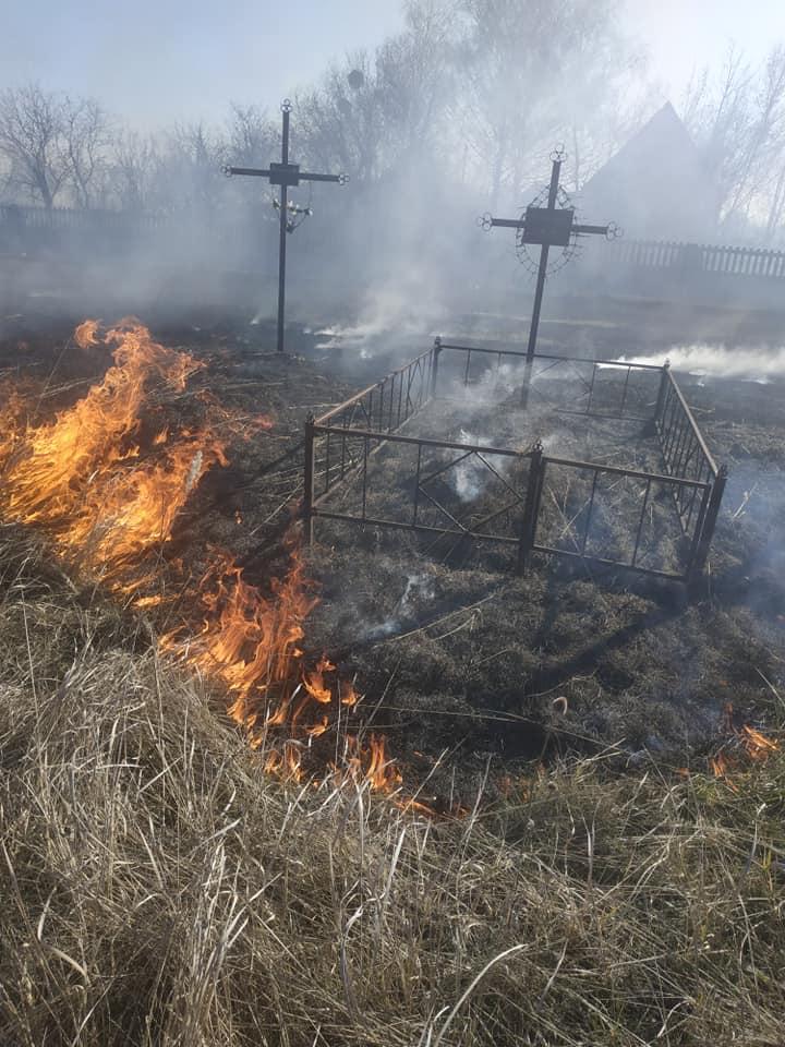У Переяславі вогонь із сухостою перекинувся на кладовище -  - 90178574 599327860653628 9060484345592020992 n