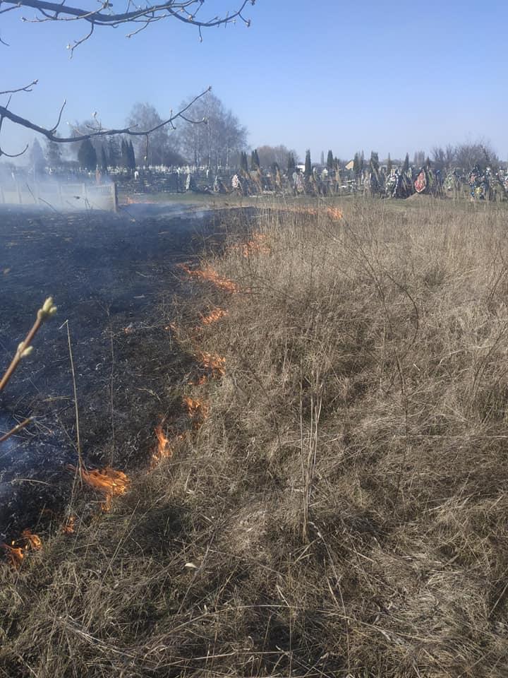 У Переяславі вогонь із сухостою перекинувся на кладовище -  - 90334230 599327887320292 6170382422408953856 n