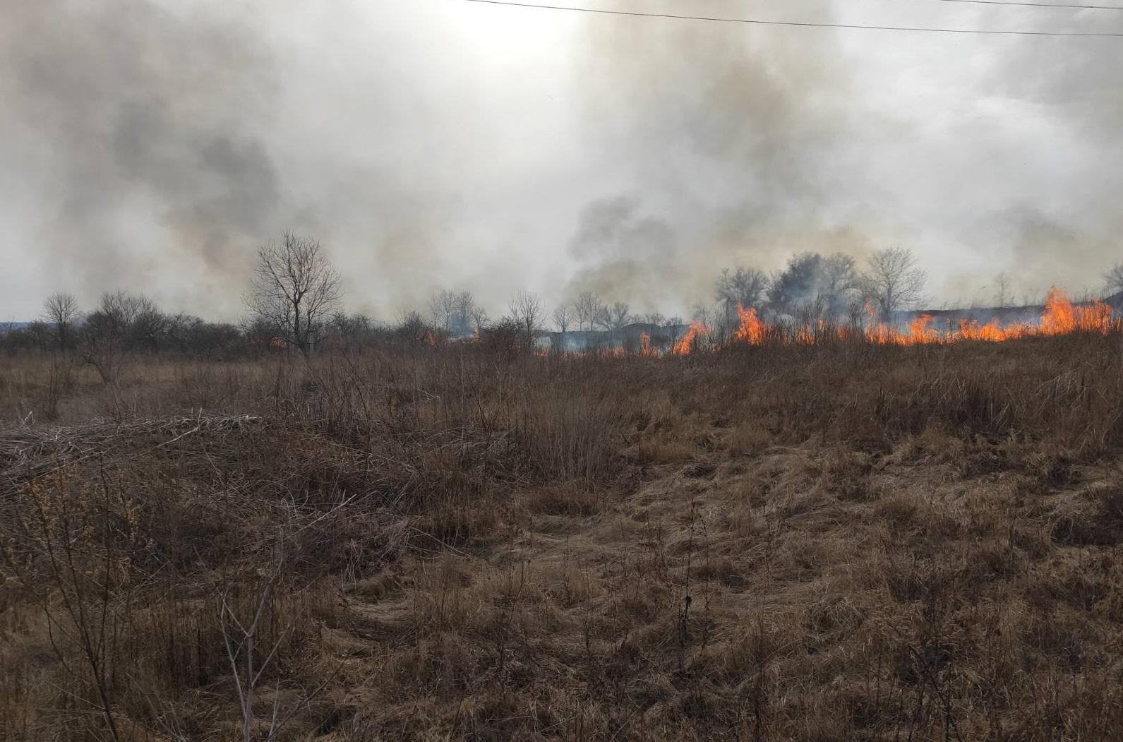 Богуславщина: пожежі ліквідовують, а підпали продовжуються -  - Bgsl