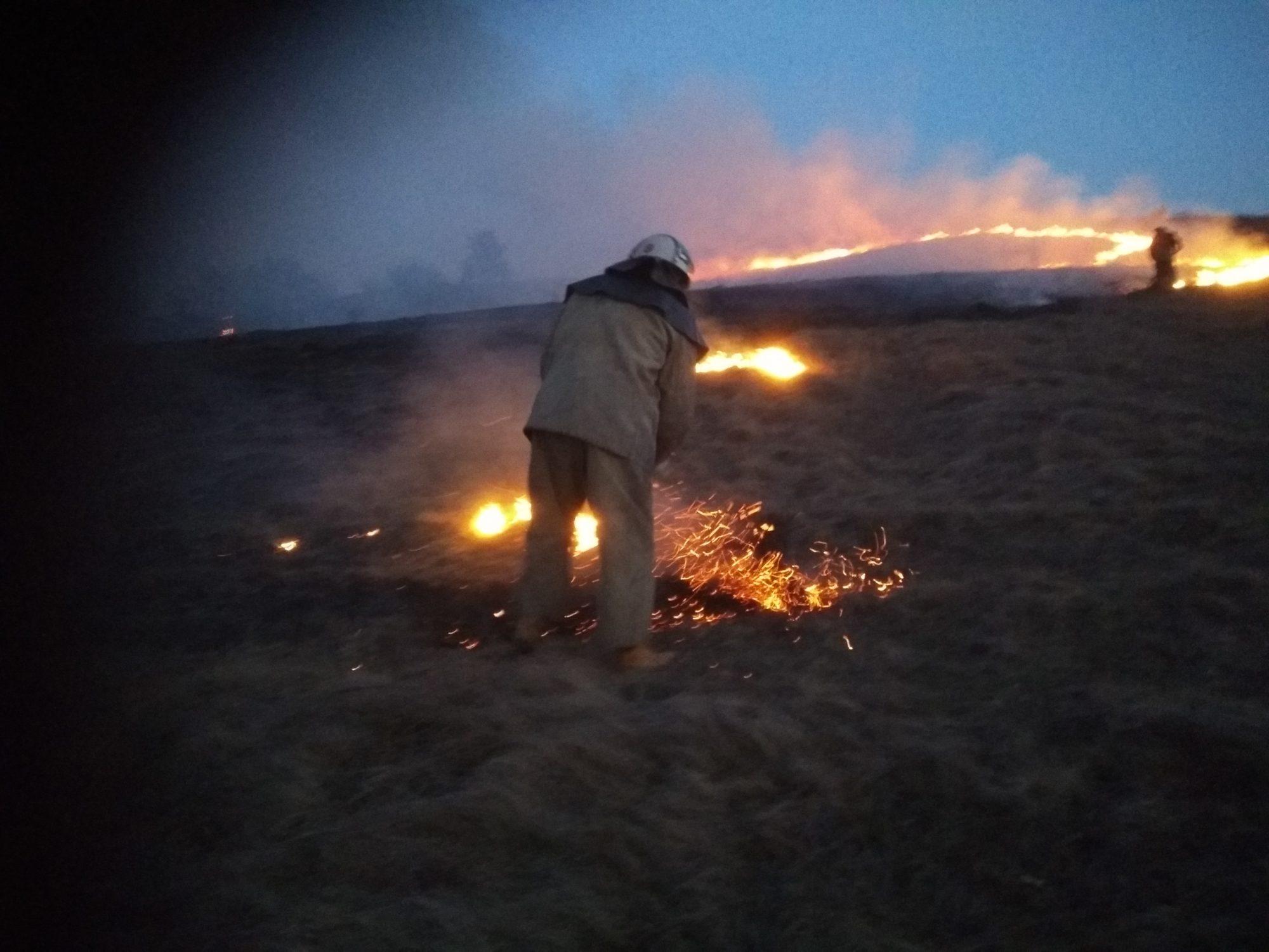 В екосистемах Київщини за добу сталося 150 пожеж на площі 215 га -  - IMG 20200319 183802 2000x1500