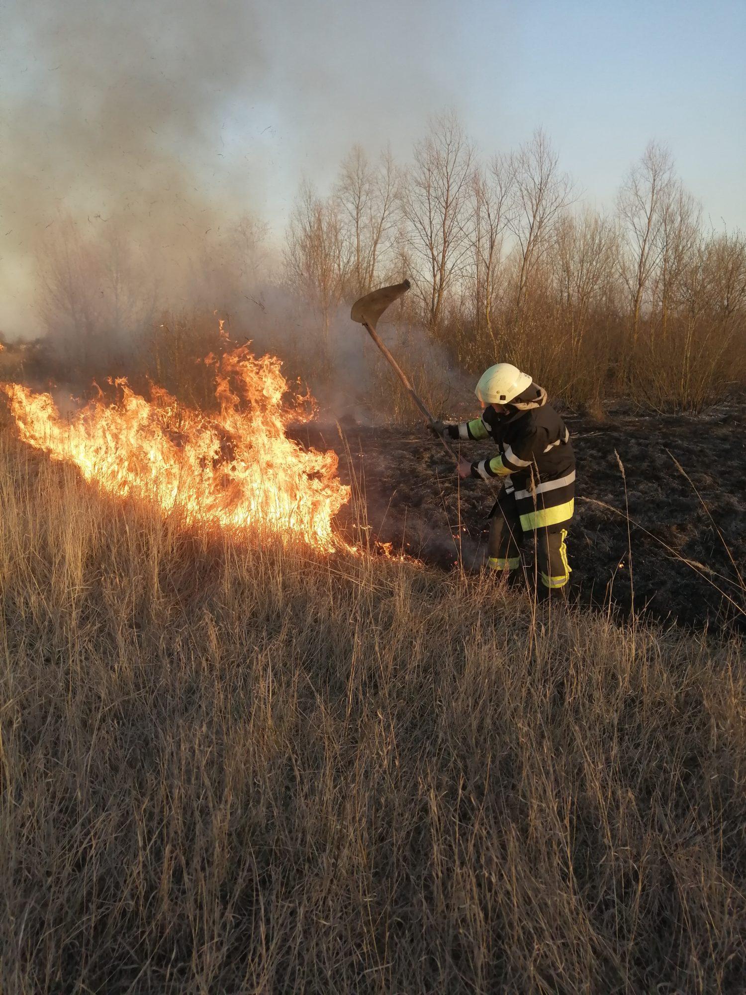 На Київщині знову масово палять траву: рятувальники б'ють на сполох - трав'яний настил, пожежі, київщина - IMG 20200320 172742 1500x2000
