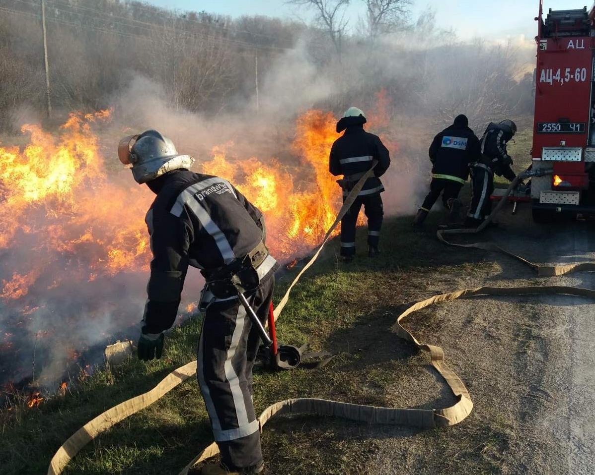 28 пожеж на природі сталося у Києво-Святошинському районі на вихідних -  - IMG 5652