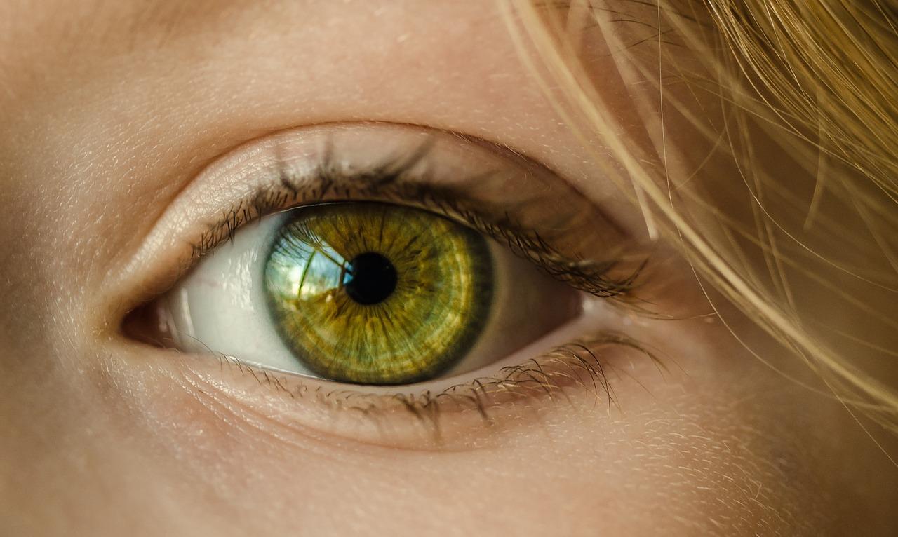 Глаукома – основна причина сліпоти: в Україні сліпа людина є в кожній 10-й родині -  - eye 1132531 1280