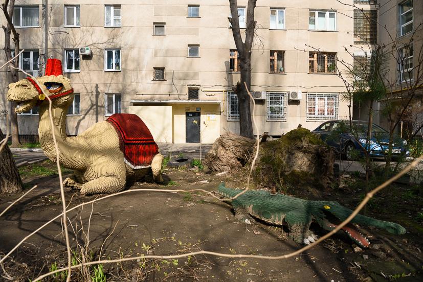 """В одеському дворі """"живе"""" власний верблюд та крокодил - Одеса - lego"""
