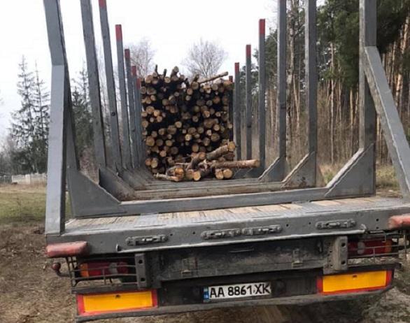 На Вишгородщині люди зафіксували вивезення немаркованого лісу - Поліція, київщина, Димер, Вишгородський район - lis2 ob