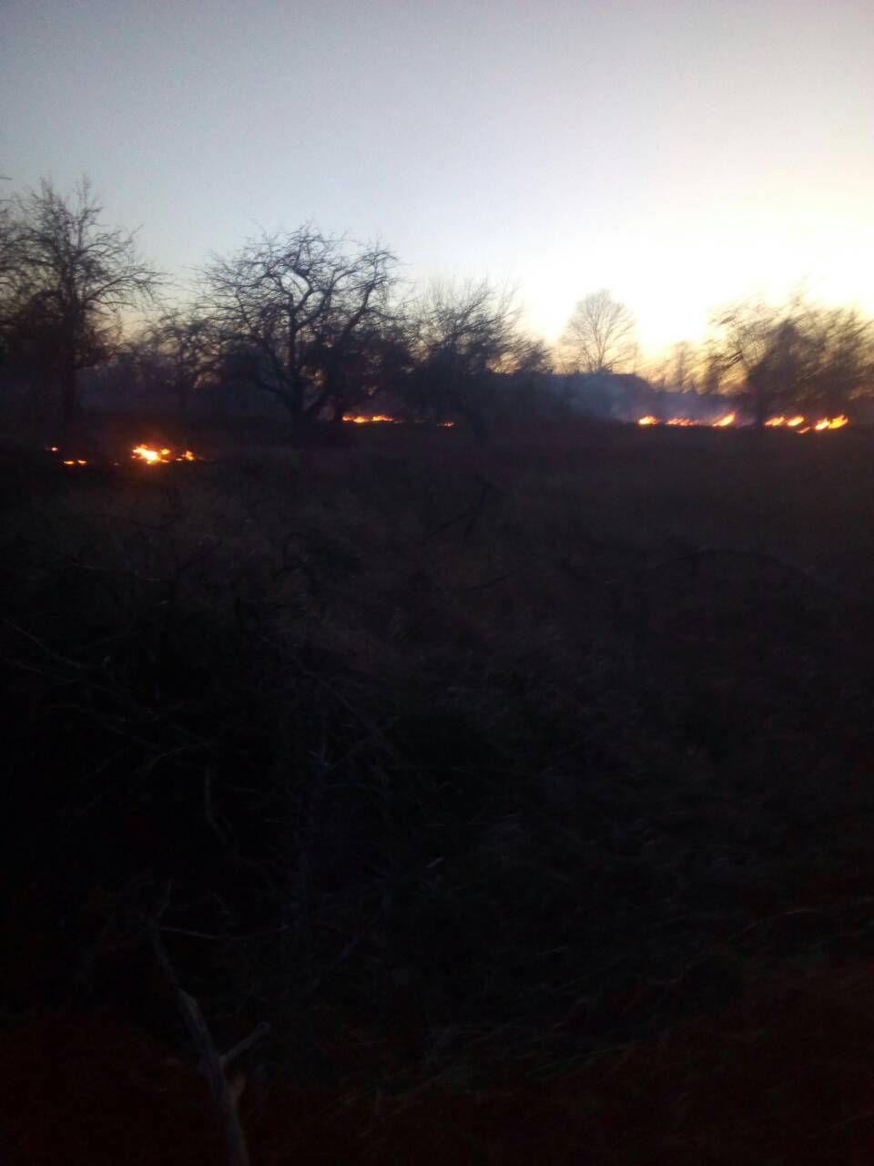 За минулу добу в екосистемах Іванківщини сталося п'ять пожеж, в яких горіли гектари трави -  - photo 2020 03 16 11 41 23