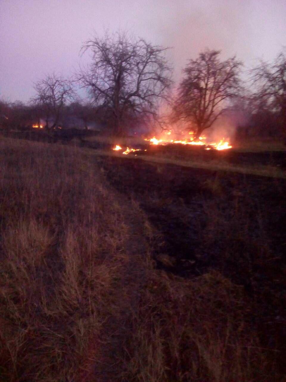 За минулу добу в екосистемах Іванківщини сталося п'ять пожеж, в яких горіли гектари трави -  - photo 2020 03 16 11 41 27