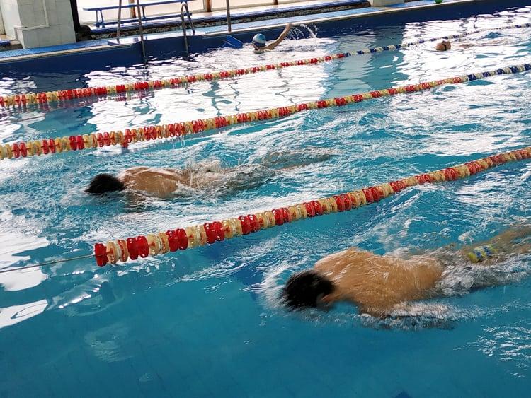 Вишгородські плавці здобули «золото» - Ткаченко, спорт, плавання, нагороди, Крижанівський, київщина, Вишгород - plavtsi2