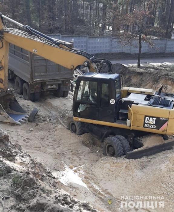 Незаконна вирубка лісу в Ірпені: втрутилась поліція - Поліція, кримінал, київщина, ірпінь - sosny2