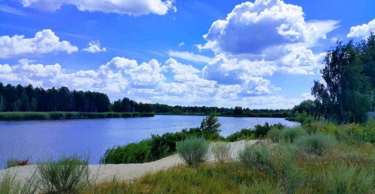 На Вишгородщині віддали у приватну власність землі водного фонду - судовий позов, Прокуратура, київщина, земельні ділянки, Вишгородський район - zemlya