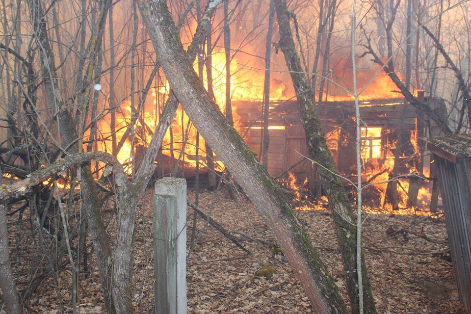 Боротьба з лісовими пожежами в зоні ЧАЕС (ФОТО) -  - 001