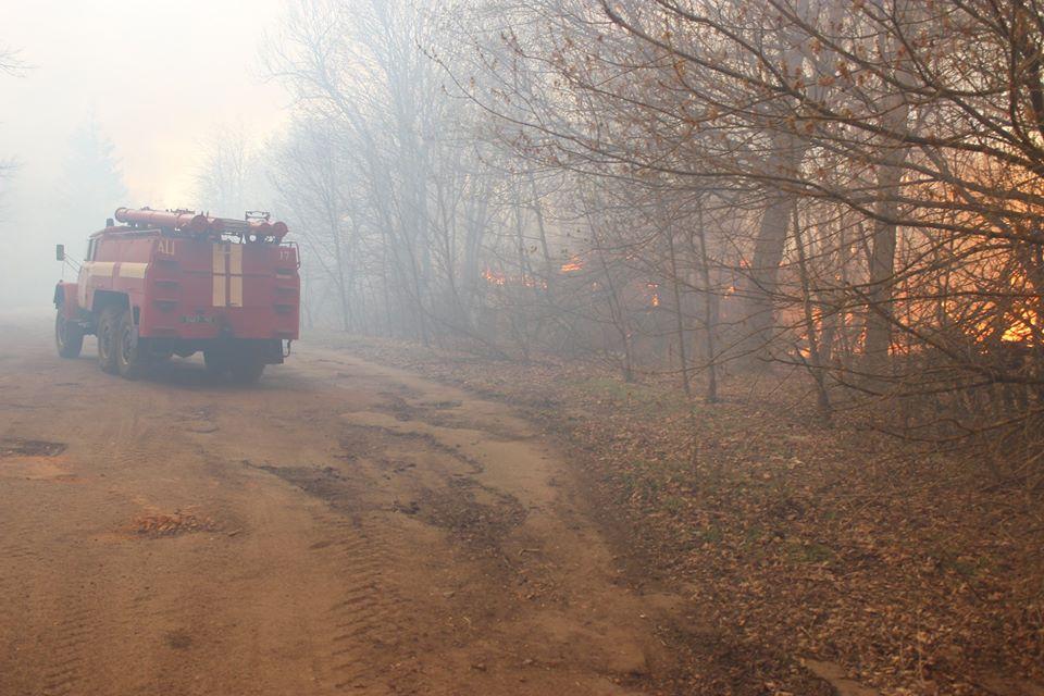 Боротьба з лісовими пожежами в зоні ЧАЕС (ФОТО) -  - 003