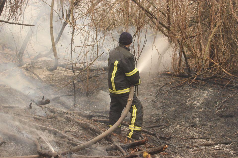 Боротьба з лісовими пожежами в зоні ЧАЕС (ФОТО) -  - 004