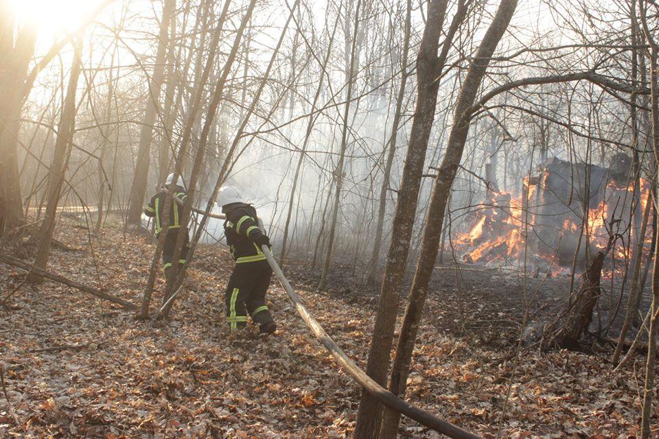 Боротьба з лісовими пожежами в зоні ЧАЕС (ФОТО) -  - 006