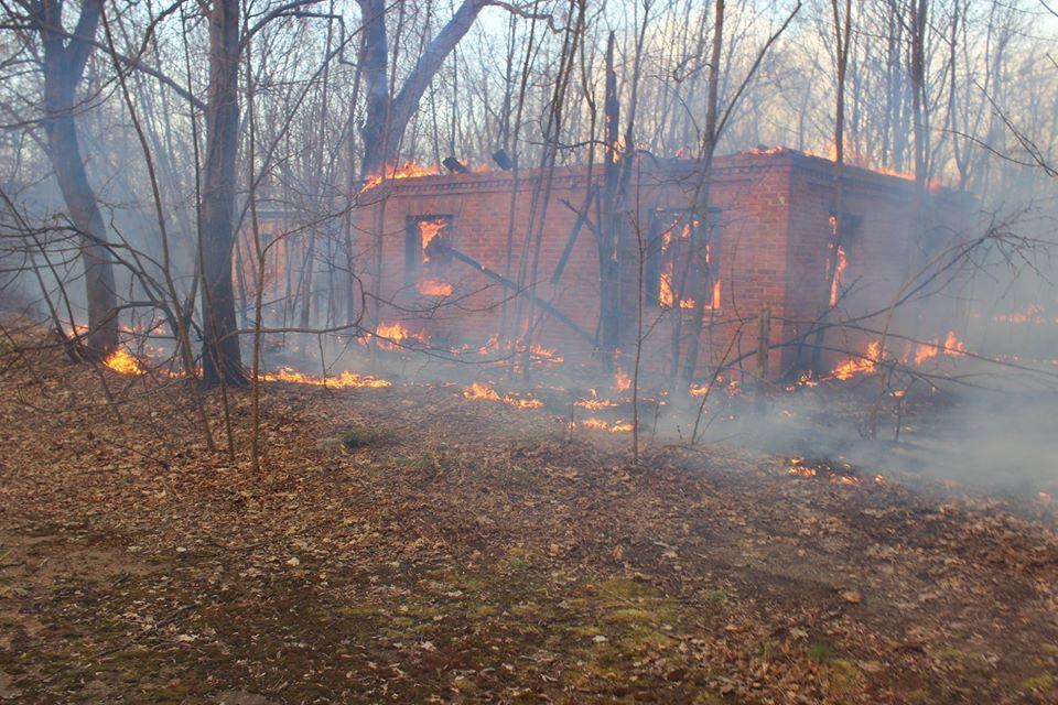 Боротьба з лісовими пожежами в зоні ЧАЕС (ФОТО) -  - 007