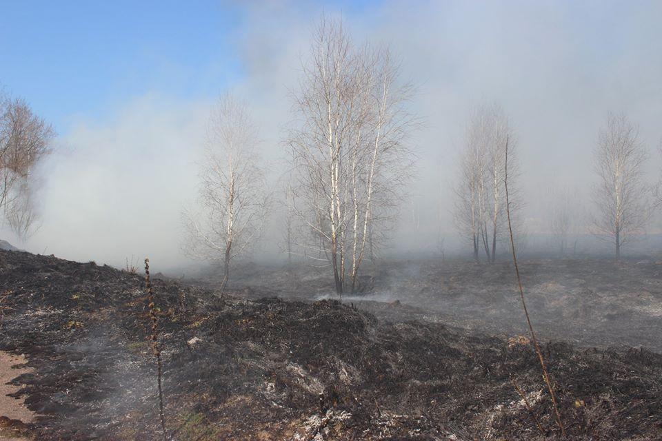 Боротьба з лісовими пожежами в зоні ЧАЕС (ФОТО) -  - 008