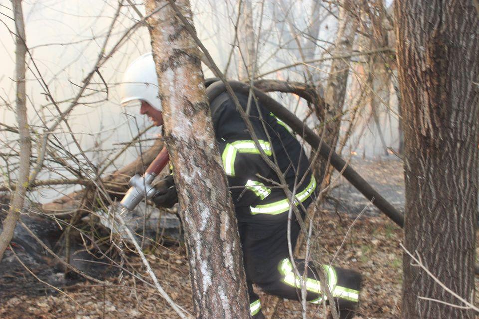 Боротьба з лісовими пожежами в зоні ЧАЕС (ФОТО) -  - 012