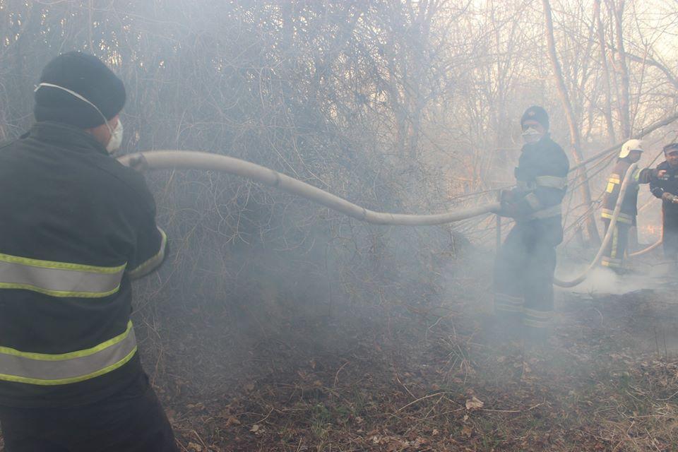 Боротьба з лісовими пожежами в зоні ЧАЕС (ФОТО) -  - 014