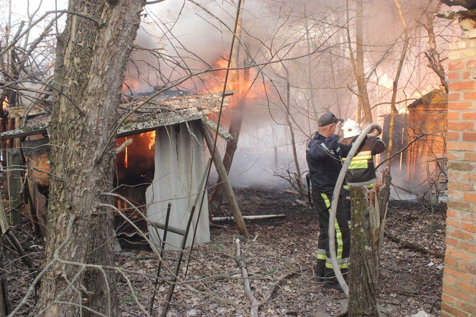 Боротьба з лісовими пожежами в зоні ЧАЕС (ФОТО) -  - 016
