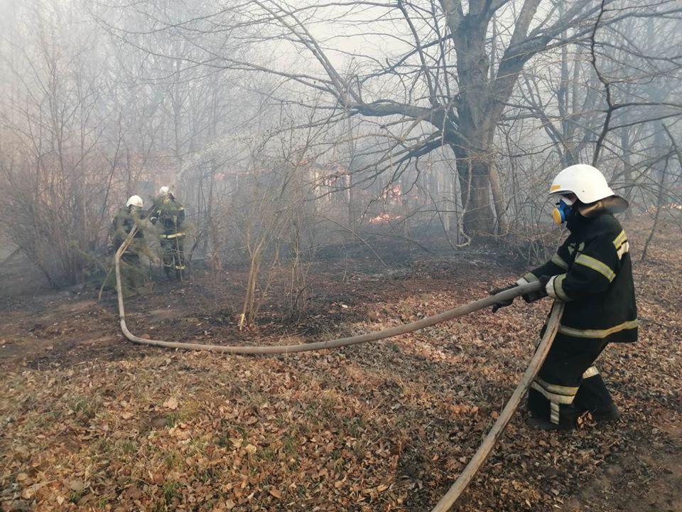 Боротьба з лісовими пожежами в зоні ЧАЕС (ФОТО) -  - 022