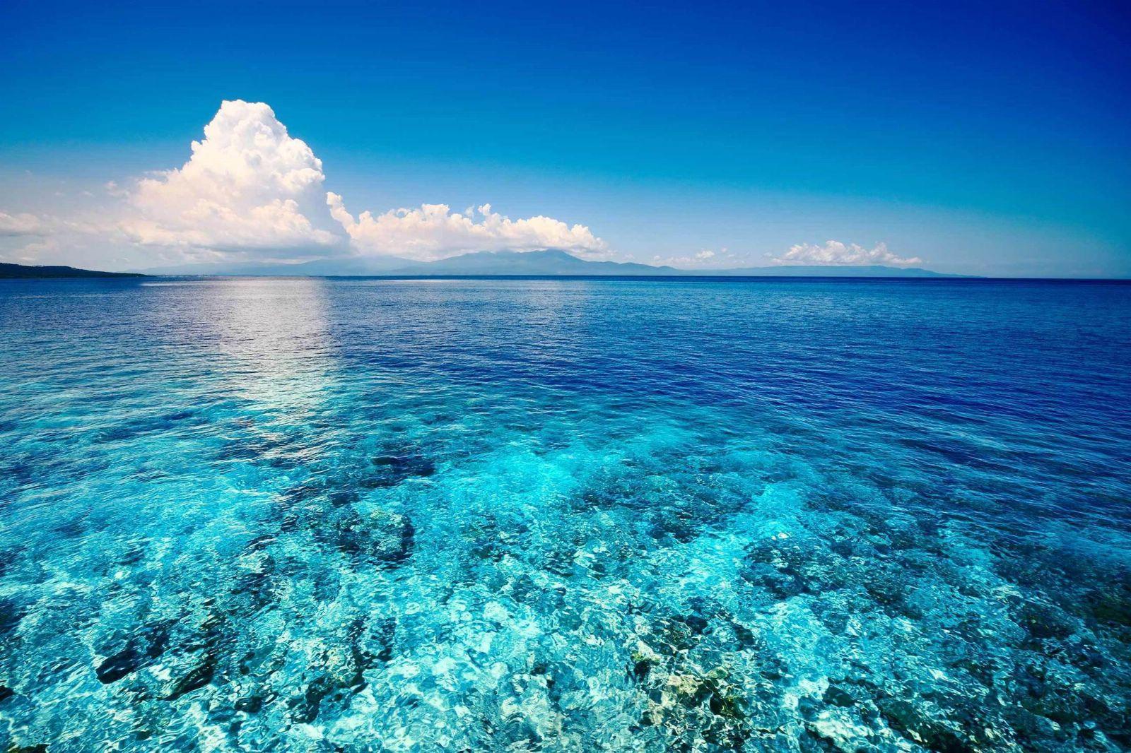 Вчені вважають, що Світовий океан можна відновити за 30 років - Світовий океан, океан, Вода - 03 okean