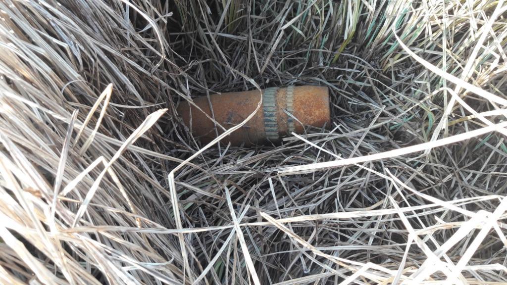 У Сквирському районі чоловік в траві знайшов артилерійський снаряд -  - 1 1 1