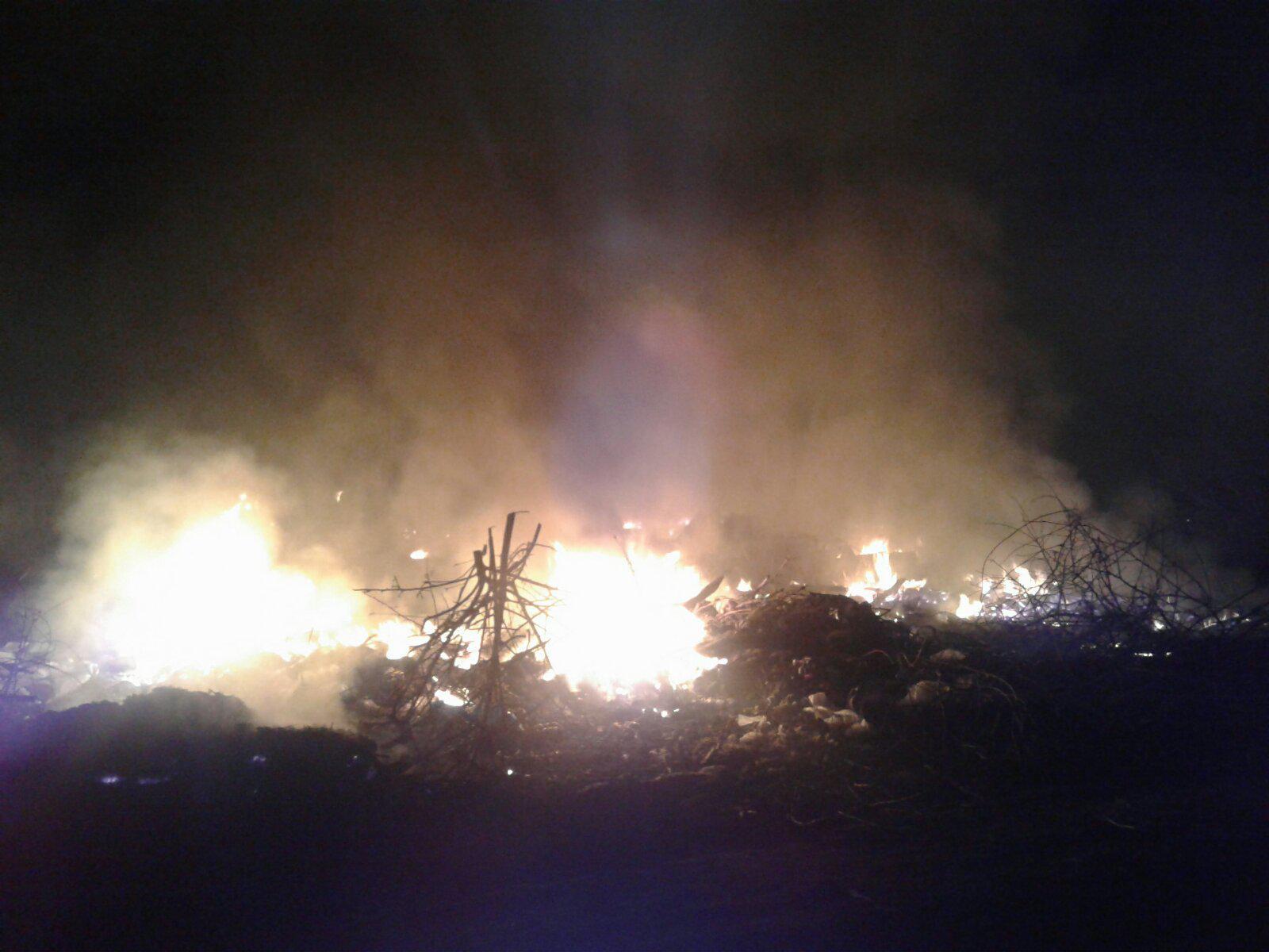 Білоцерківщина у вогні: рятувальники 4 рази протягом доби гасили пожежі у природних екосистемах - пожежі, ДСНС, Біла Церква - 11viber