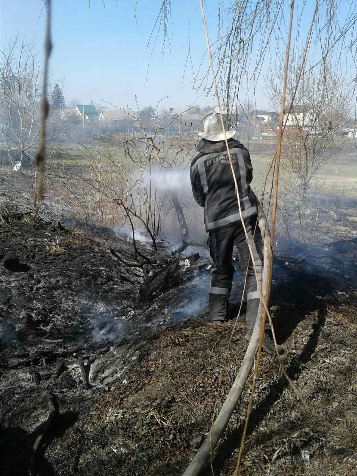 Білоцерківщина у вогні: рятувальники 4 рази протягом доби гасили пожежі у природних екосистемах - пожежі, ДСНС, Біла Церква - 11viber1