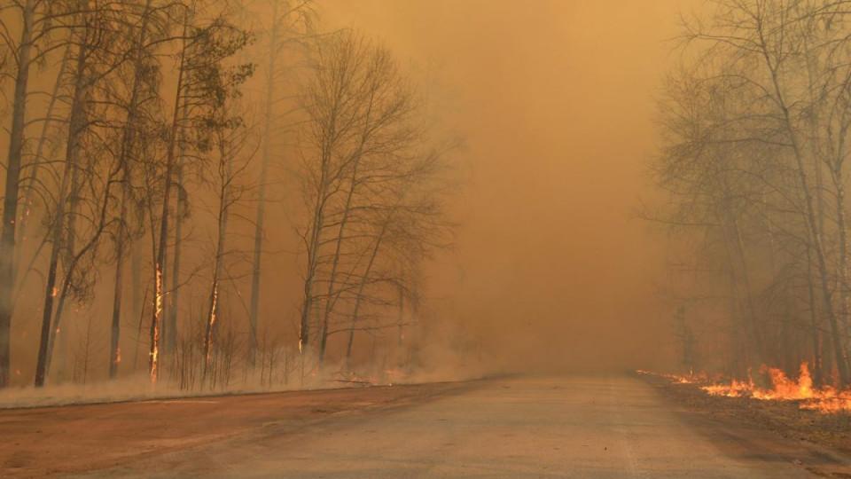 У Чорнобилі вже більше тижня гасять ліс: авіація скинула 240 тонн води - Чорнобильська зона - 12 chernobyl