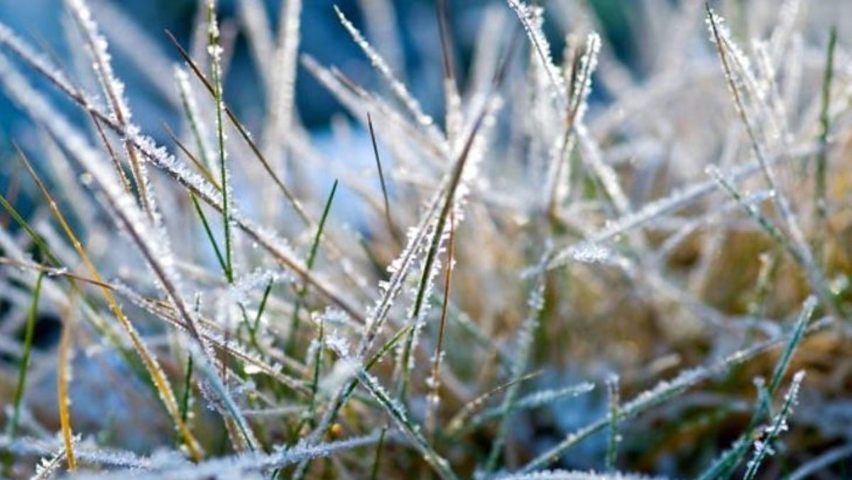 Синоптики попередили мешканців Київщини про ІІ рівень небезпеки через погодні умови - погода, заморозки - 12 zamorozky