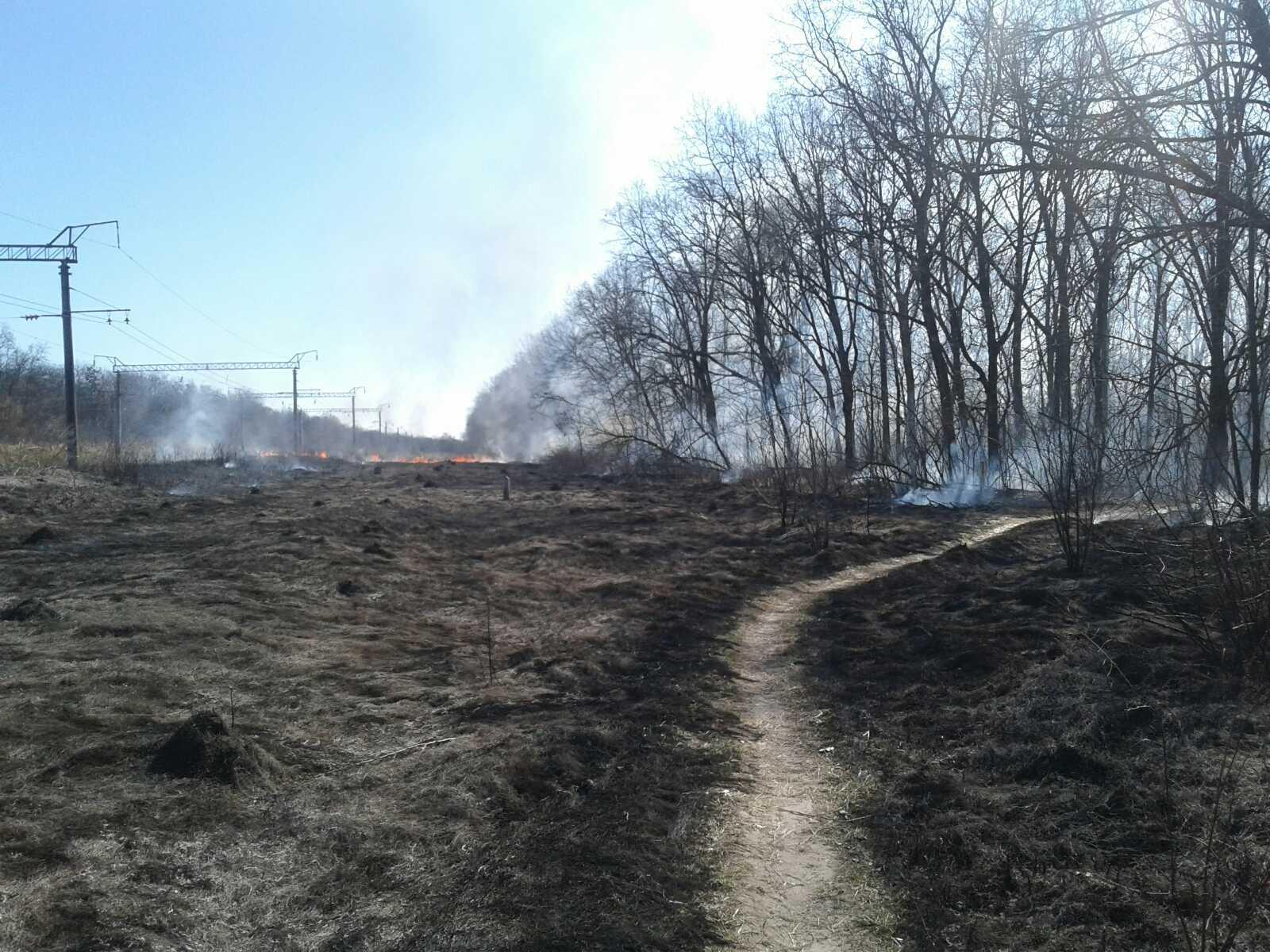 Білоцерківщина у вогні: рятувальники 4 рази протягом доби гасили пожежі у природних екосистемах - пожежі, ДСНС, Біла Церква - 13 viber