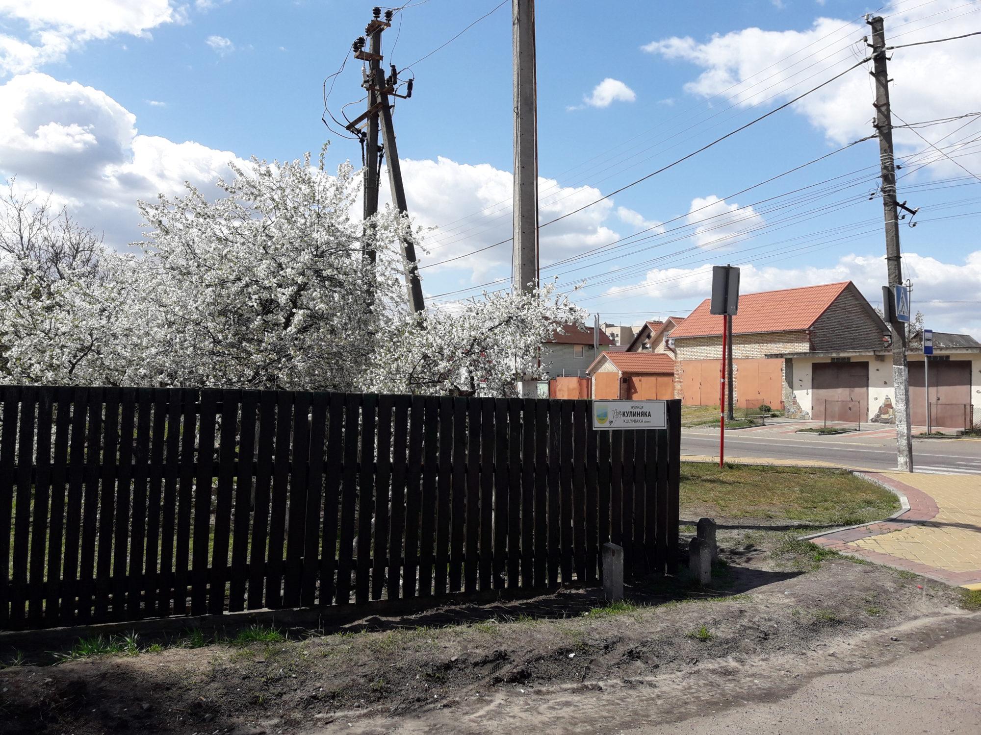 Ірпінь квітне: у місті настає пік цвітіння дерев та кущів (ФОТО) -  - 20200427 121728 2000x1500