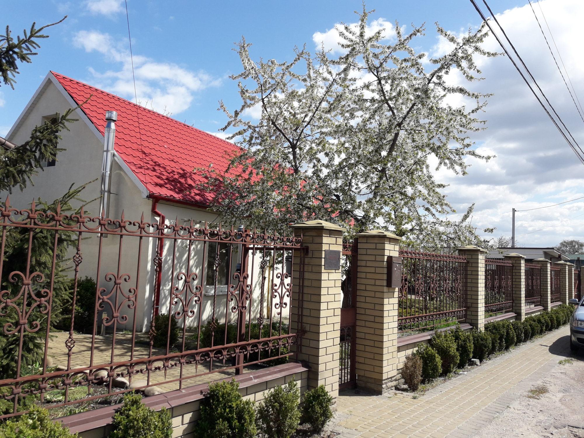 Ірпінь квітне: у місті настає пік цвітіння дерев та кущів (ФОТО) -  - 20200427 121800 2000x1500