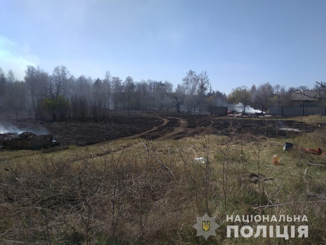 Спалював сміття – загорівся ліс: палієві на Київщині загрожує до 5 років позбавлення волі - пожежа - 24 pozhezha4