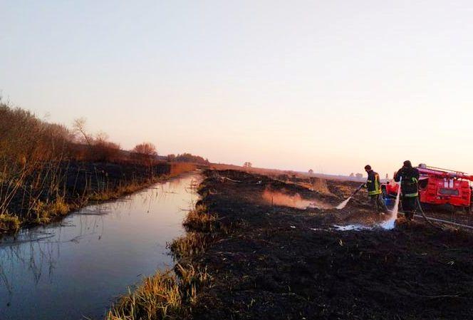 На Київщині після масштабної пожежі сухостою п'ять днів гасили пожежу на торфовищах (ВІДЕО) - торфовище, пожежа - 3 2
