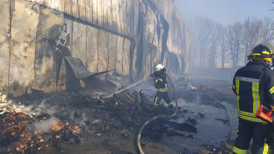 Загоряння трави спричинило масштабну пожежу овочесховища в Броварах -  - 76