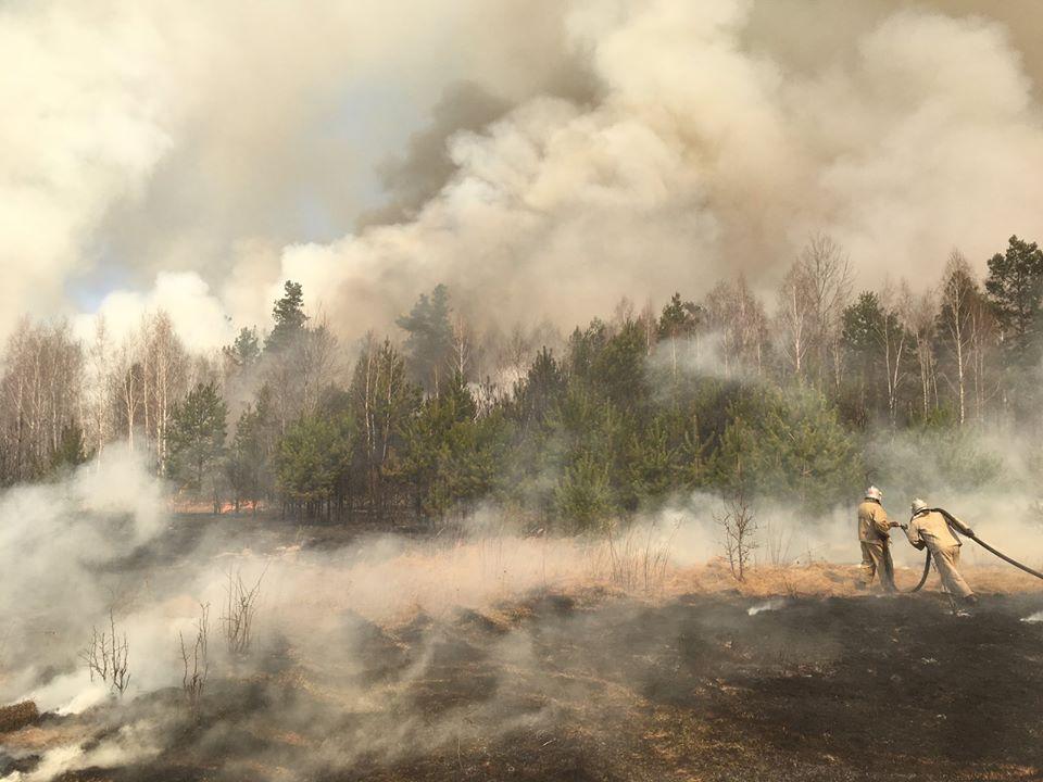 Ймовірних винуватців пожежі в зоні ЧАЕС затримали на Житомирщині -  - 92343511 4012084682142735 8246362355353518080 o