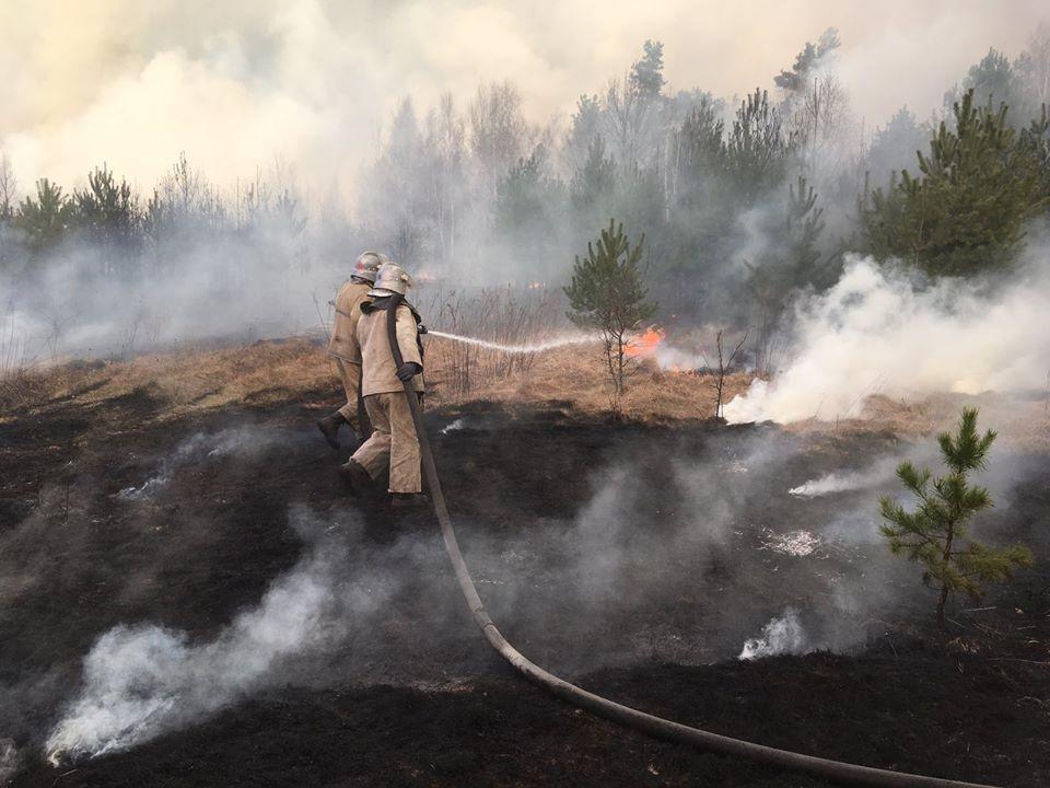Ймовірних винуватців пожежі в зоні ЧАЕС затримали на Житомирщині -  - 92558061 4012084492142754 3387137052167372800 o